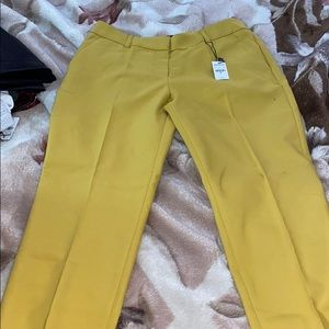 Yellow Express Pants